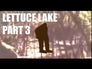 Lettuce Lake Bigfoot Video Series Parts 2 and 3 Now Available