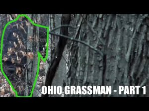 NEW Salt Fork Ohio Grassman - Bigfoot - Sasquatch