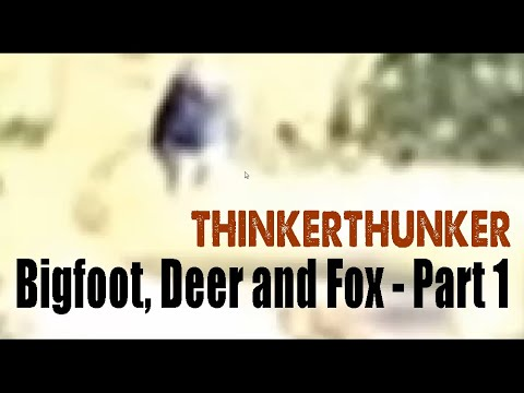 The Deer, Fox and Bigfoot - Part 1 (ThinkerThunker video)