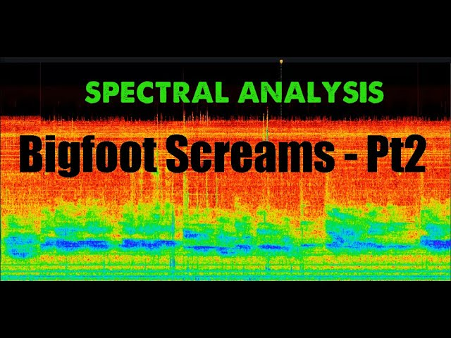 "Sierra Bigfoot Screams Video Part 2 ""Sonic DNA"" Audio Print"