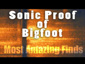 Bigfoot Most Amazing Finds #2 - Sonic Proof of Bigfoot