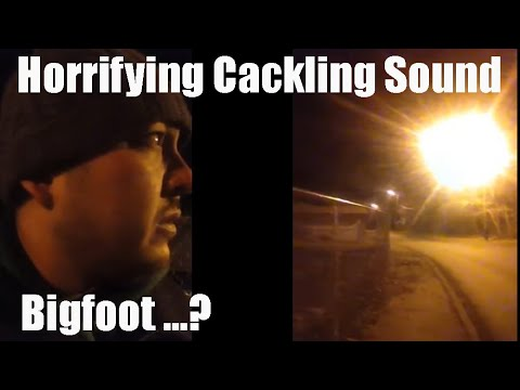 Terrifying Cackle in the Woods on Umatilla Reservation...Bigfoot?