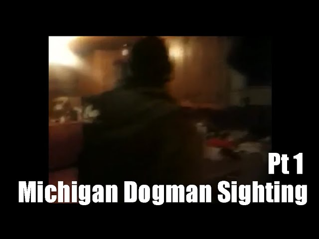 Michigan Dogman Sighting ThinkerThunker Video Breakdown