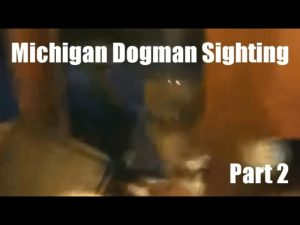 Michigan Dogman Sighting Part 2 ThinkerThunker Video Breakdown