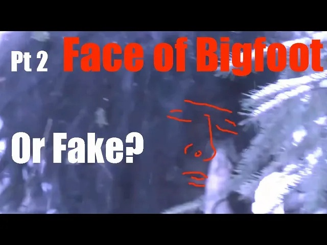 Bigfoot Attack in the Canadian Wilderness - Sonny Vator Videos Breakdown Pt. 2