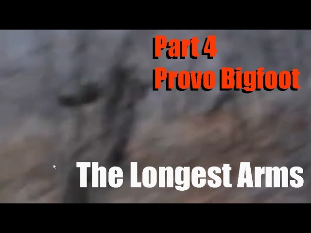 Provo Utah Bigfoot Throwing a Rock - Part 4: The Throw & The Arm!