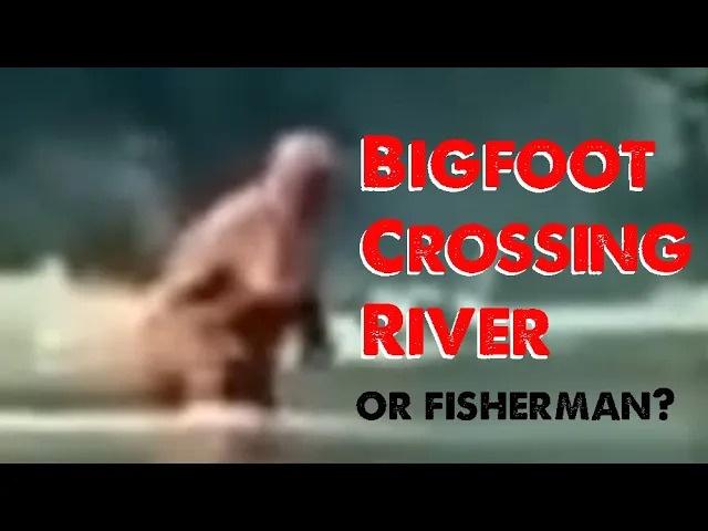 Michigan Bigfoot Video Crossing Cass River (ThinkerThunker Breakdown)